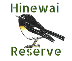 Hinewai Reserve